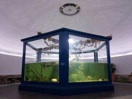 Aquarium Pula, utvrda Verudela_1 - Knauf
